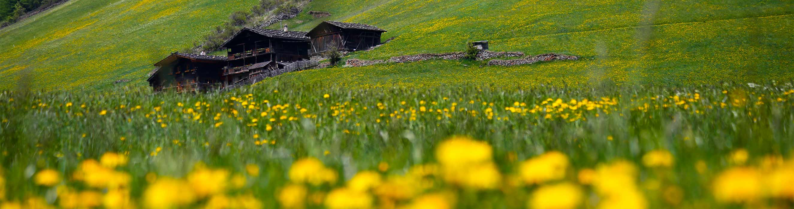 Primavera & Estate in Val Senales